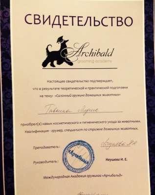 Груминг, стрижка собак и кошек ЗАО Москвы, Одинцовский р-он