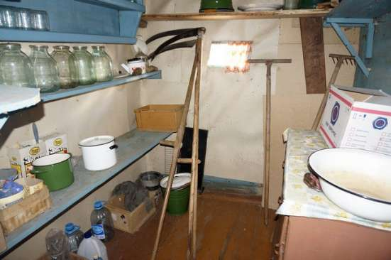 Крепкий бревенчатый дом в жилой деревне,