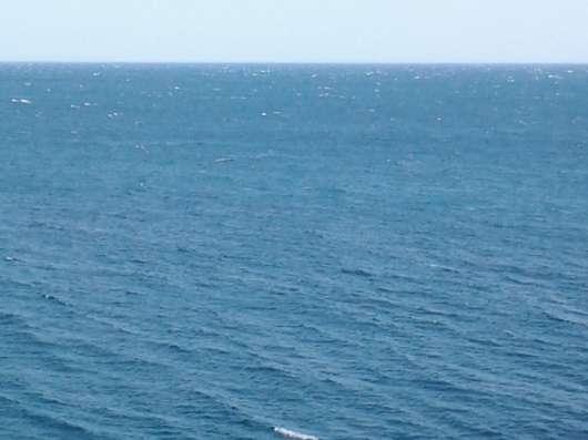 Аренда квартиры у моря. Крым. Трансфер с аэропорта в г. Феодосия Фото 1