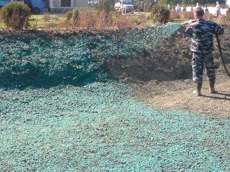 Создание газона методом гидропосева в Ростове-на-Дону Фото 4