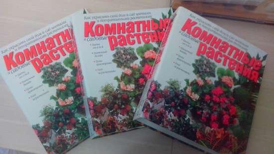 """3 книги-папки """"Комнатные растения"""""""
