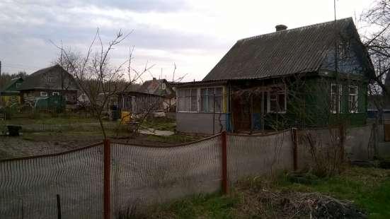 Продам дачу в добрушском районе гомельской области в г. Минск Фото 3