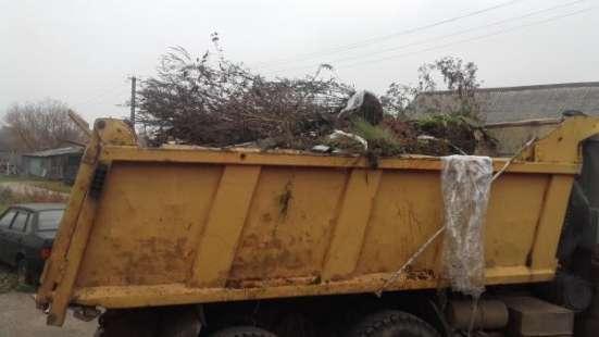 Спил и обрезка деревьев.Вывоз строительного мусора
