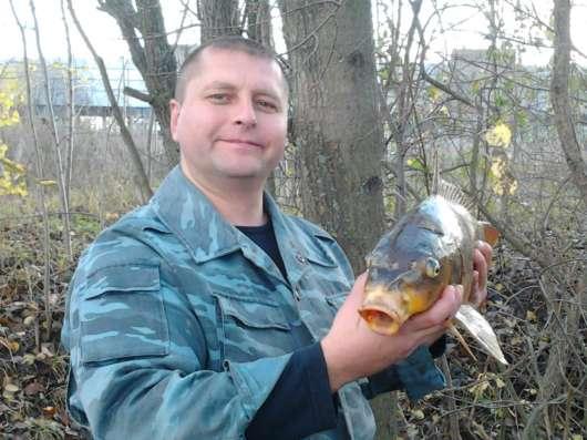 Сергей, 38 лет, хочет познакомиться