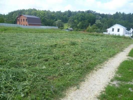 Покос травы, бурьяна, сухостоя. Расчистка участка. Спил дерева.