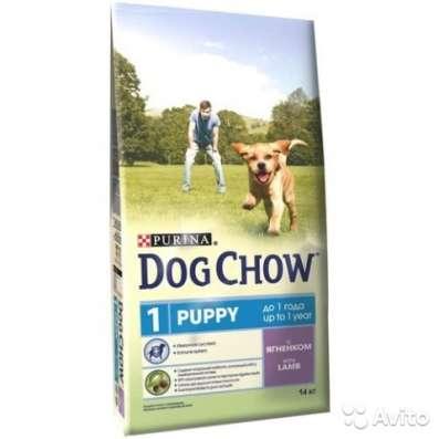 Корм для собак DOG chow в Екатеринбурге Фото 2