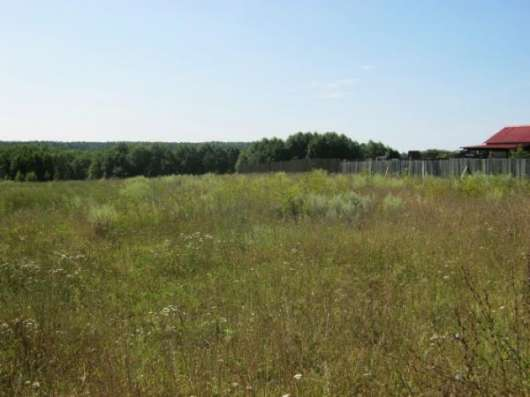 Продается земельный участок 25 соток в деревне Большое Тесово (рядом река Москва) 98 км от МКАД по Минскому, Можайскому шоссе.