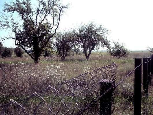 Земельный участок в г. Киев Фото 4