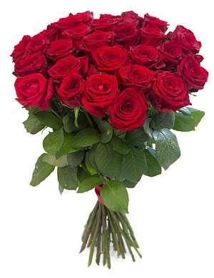 25 роз за 1500 рублей