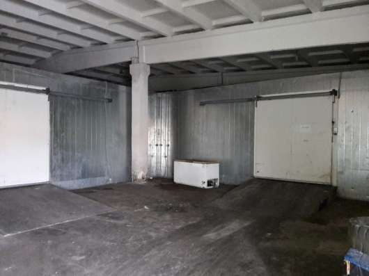 Сдам склад-холодильник, 430 кв.м,м.Комендантский пр.