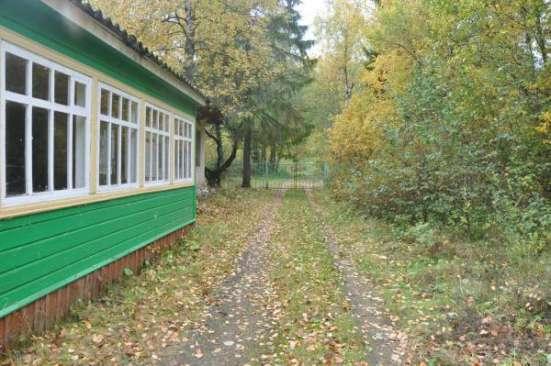 Продажа земельных владений на берегу Плещеево оз.