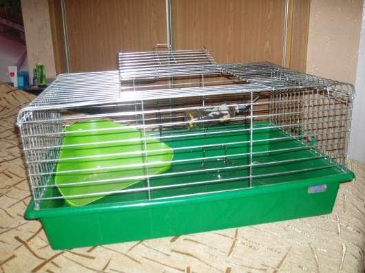 Клетка для кролика в г. Минск Фото 1