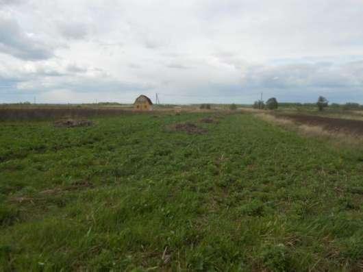 Продается участок 16,5 соток в деревне Клементьево, Можайский р-он, 109 км от МКАД по Минскому шоссе.