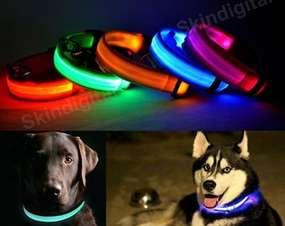 Светящийся ошейник для собак.