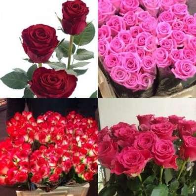 Круглосуточная доставка цветов. Розы от 59 руб в г. Самара Фото 1