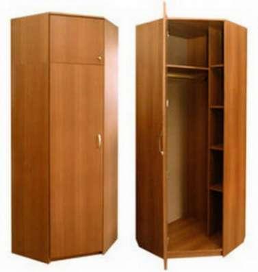 шкафы-купе по вашим размерам в Пензе Фото 3